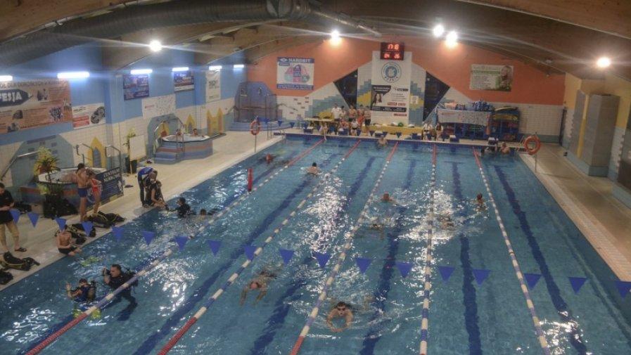 """Akcja """"Graj z delfinkami, pływając z mistrzami"""" (nowe zdjęcia)"""